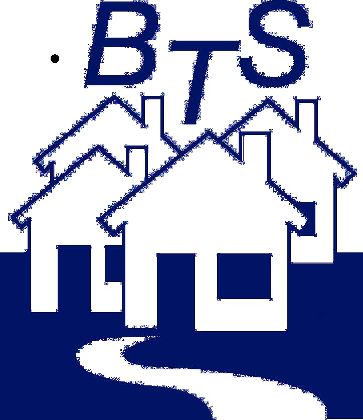 Logo BTS transp